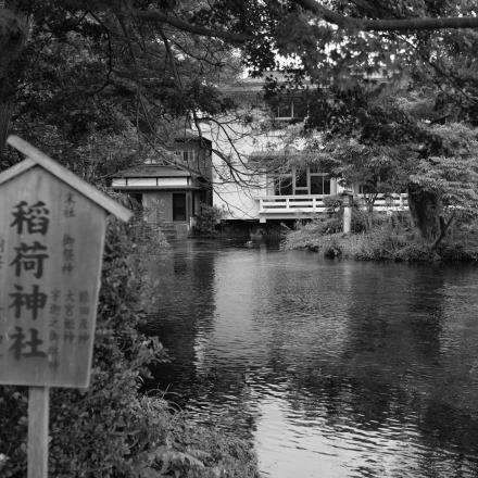 wakutama pond in Fujinomiya City