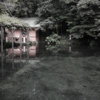 Wakutama pond