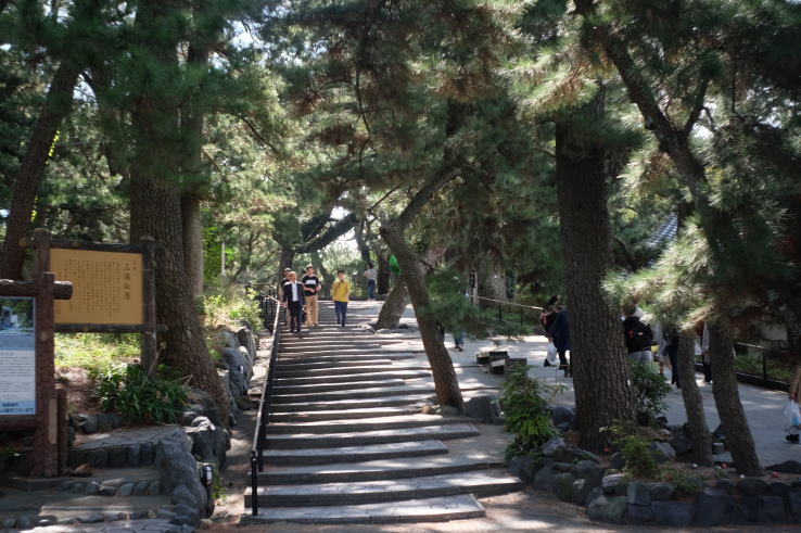 Miho Pine Grove, one of the famous sightseeing spots in Shizuoka, Japan
