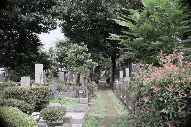 Zoushigaya Cemetery in Tokyo | 雑司ヶ谷霊園