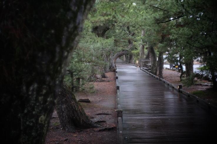 Road of Deity (神の道)