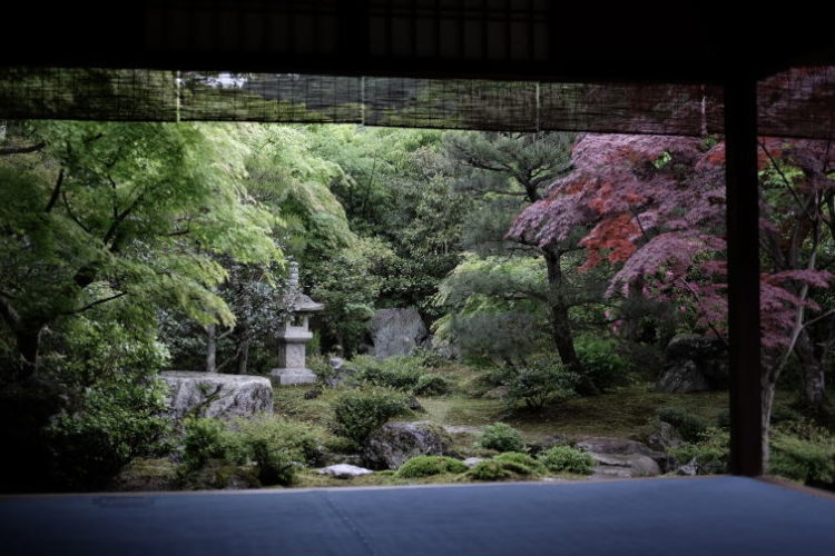 The garden of the Nishimura House in Kyoto (京都西村家庭園)