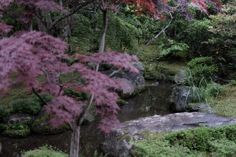The brook flowing the garden of the Nishimura House in Kyoto. (西村家庭園)