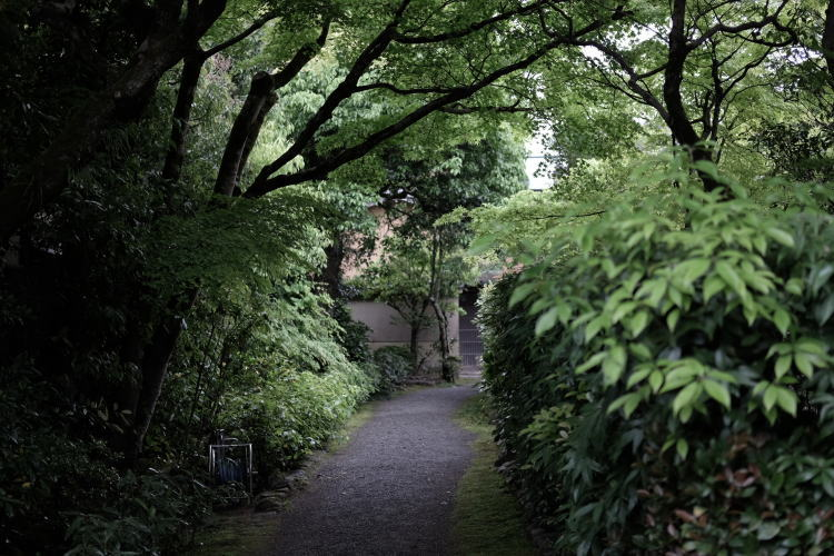 A path leading to the Nishimura House.