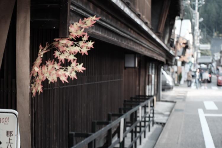 A street of Gujo Hachiman (郡上八幡の街並み)