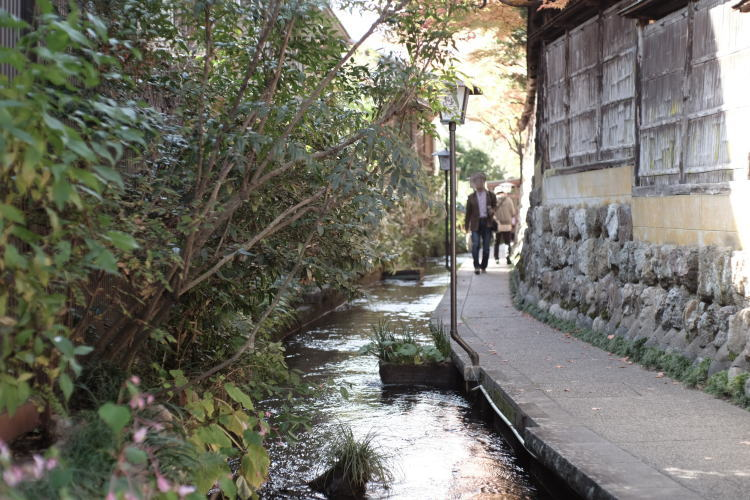 Igawa Walkway in Gujo Hachiman (郡上八幡のいがわ小径)