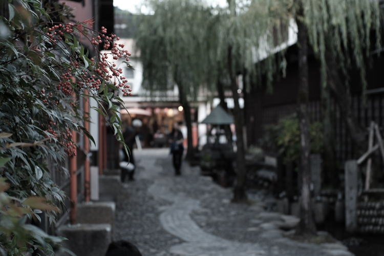 Yanaka Water Path (郡上八幡のやなか水の小径)