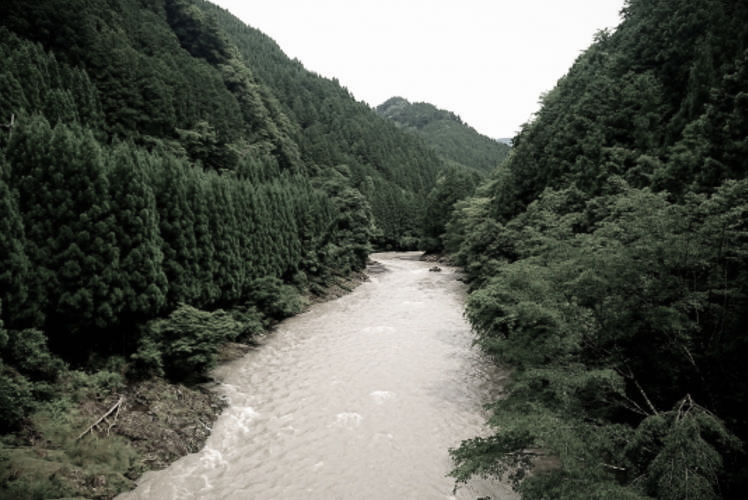 A river in the Kii Mountains, Wakayama (紀伊山地)