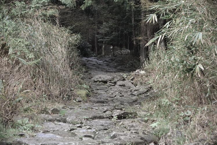 one of the Kumano Kodo pilgrimage routes (熊野古道)