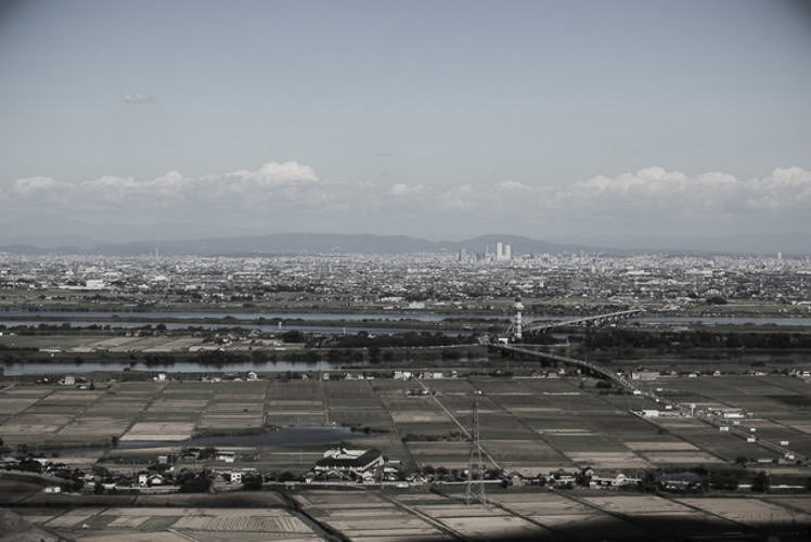 Rice fields in the Nobi Plain.