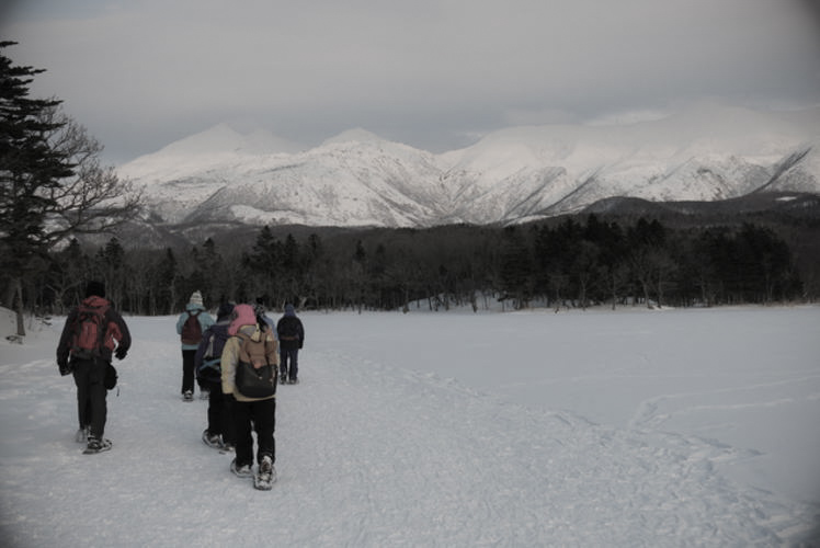 Snow trekking in the winter in Shretoko. (知床の冬のエコツアー)
