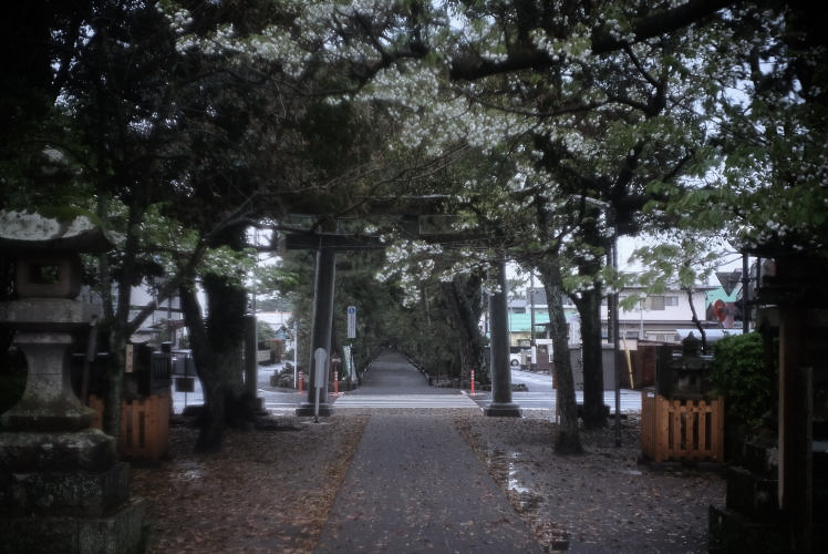 The entrance to Kami no Michi as seen from Miho Shrine
