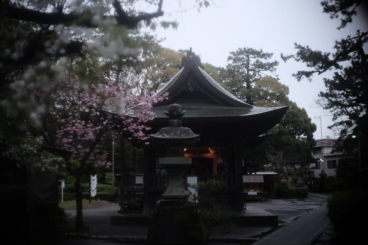 Miho Shrine  (with a Xenon 25mm f1.4 lens).