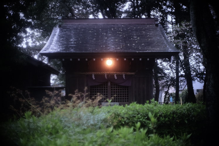 At Miho Shrine (with a Xenon 25mm f1.4 lens).