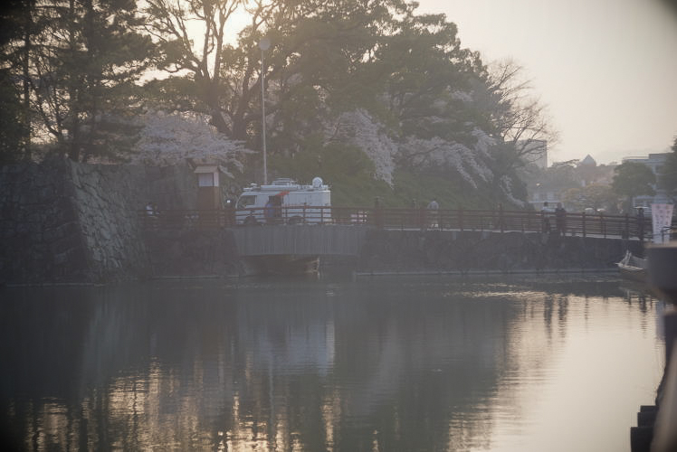 Sumpu Castle at dusk (駿府城の桜)