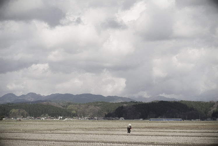 Rice paddies in Tohoku (東北の稲作)