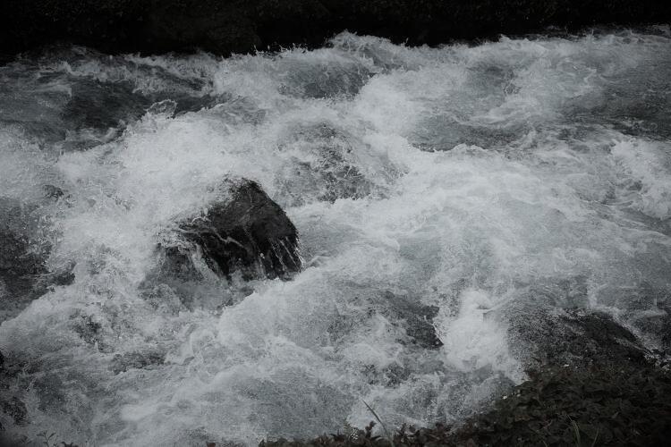 Kanda Streem | 湧玉池の神田川