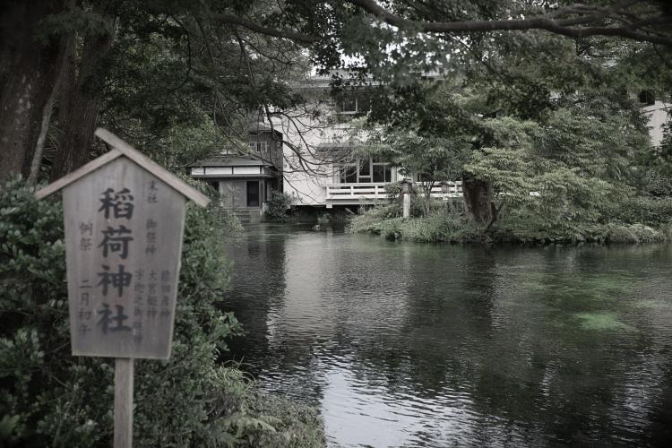 Walutama-ike | 湧玉池