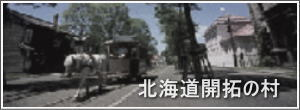 Link to Historical Village of Hokkaido website